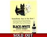 Black & White Scotch Whisky